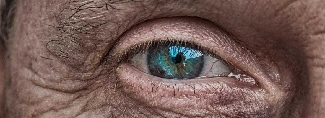 illustration Malvoyance causée par la DMLA : découverte d'un biomarqueur sanguin pour évaluer le risque lié à l'alimentation