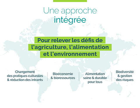Nos thématiques de recherches  : changement des pratiques culturales réduction des intrants, alimentation saine et durable pour tous,  bioéconomie bioressources, biodiversité et gestion des risques