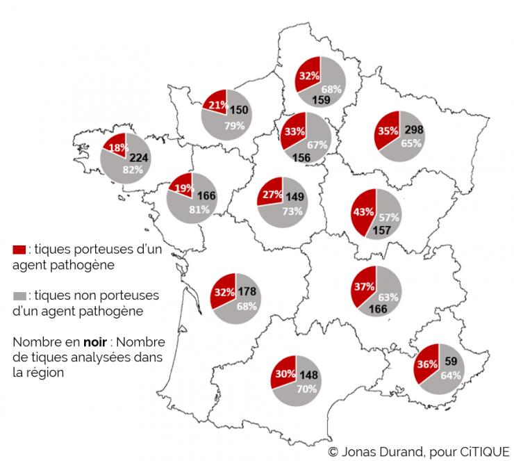 Carte de France représentant les résultats de CiTIQUE par région