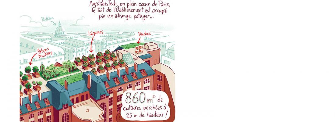 illustration BD : Sur le toit, des légumes et de la science