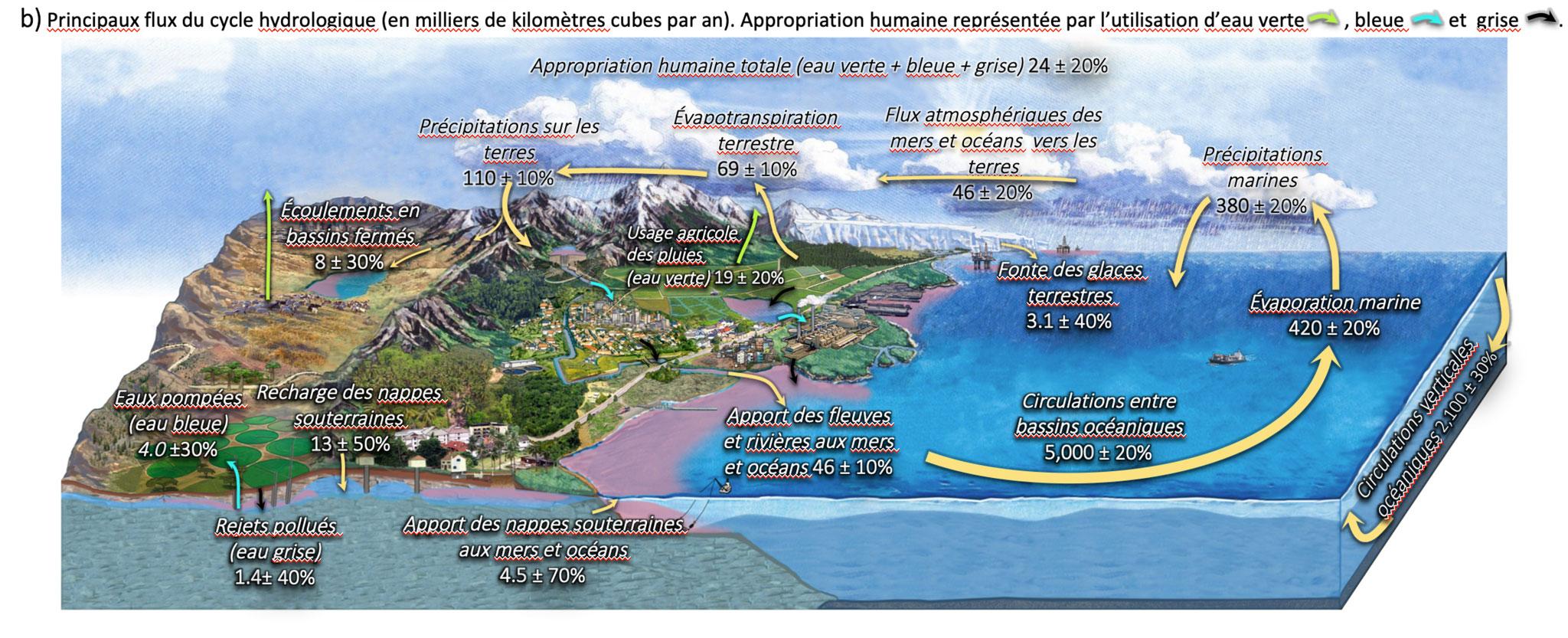 Représentation du cycle de l'eau intégrant les flux et appropriations humaines