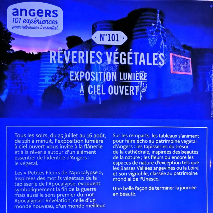 Rêveries végétales à Angers