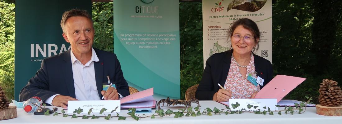 illustration INRAE et le CNPF s'engagent dans un partenariat autour du programme CiTIQUE