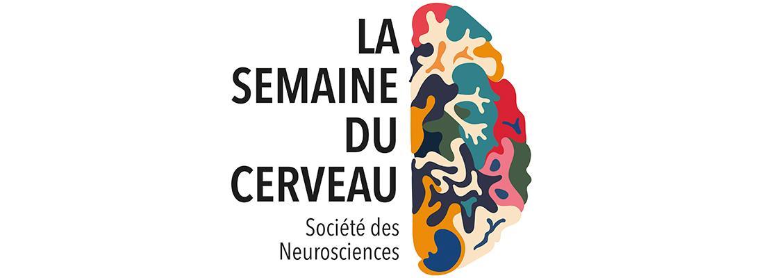 illustration Ciné-débat : « bien nourrir son cerveau »