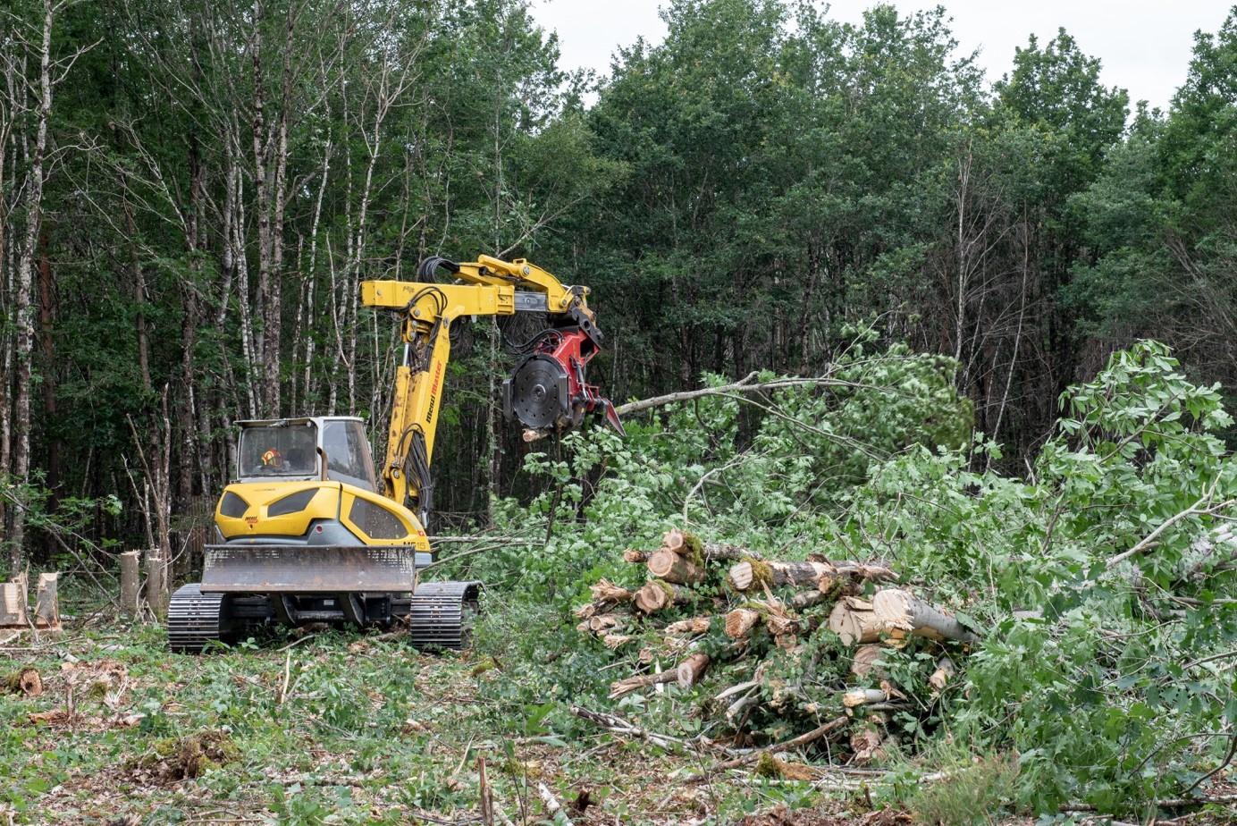 Exploitation en arbres entiers pour la production de plaquettes forestières