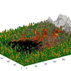Simulation FIRETEC d'un incendie se propageant dans un peuplement forestier composé d'arbres vivants (en vert, forte teneur en eau) et morts (en jaune, faible teneur en eau)