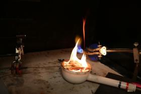 Brûlage de feuille de Pittosporum sur l'épiradiateur dans le laboratoire feu d'Aix-en-Provence