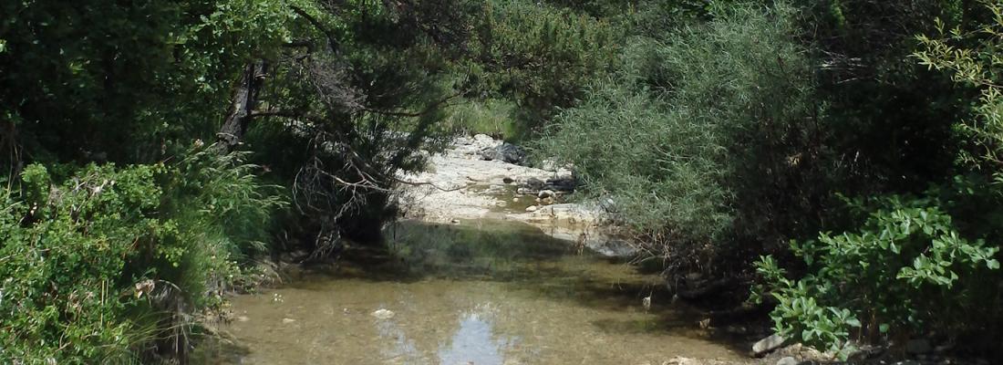 illustration A la recherche des rivières intermittentes !