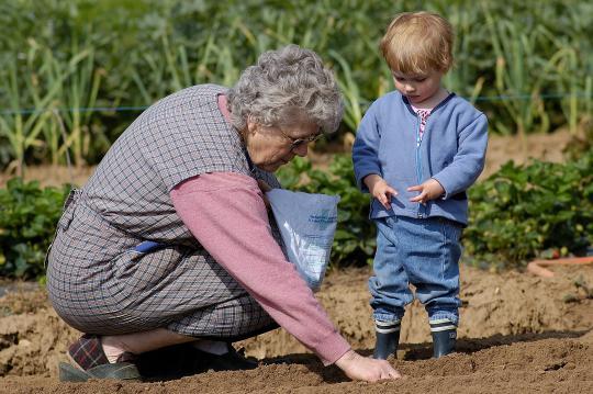 Jardins partagés : vers des modes de vie plus durables ?