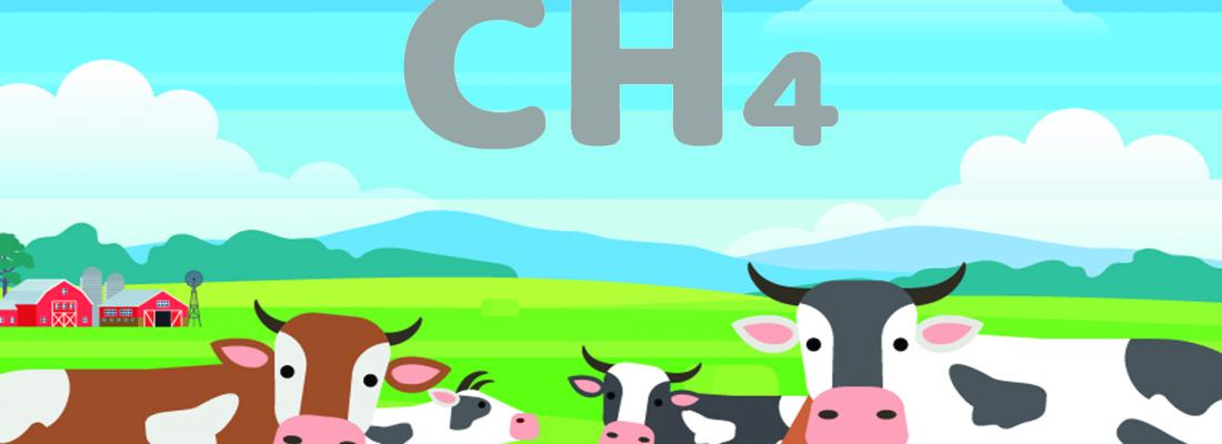 illustration Modélisation de la production de méthane émis par les ruminants