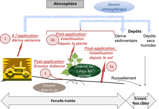 Schéma représentant les pertes de pesticides dans l'environnement