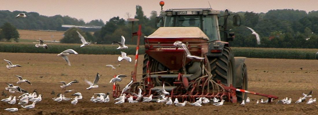 illustration Changement climatique : il faut prendre en compte la faculté d'adaptation des agriculteurs