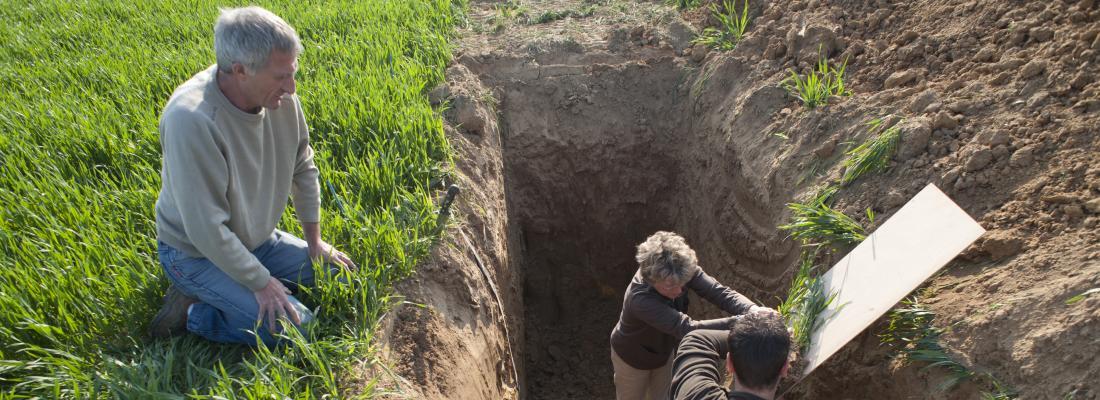 illustration CIRCASA project, towards an International Research Consortium on soil carbon