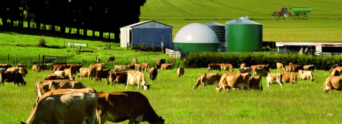 illustration  Quelle contribution de l'agriculture française à la réduction des émissions de gaz à effet de serre ?